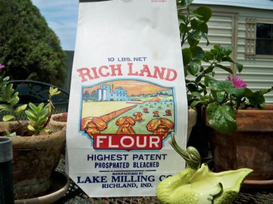 Vintage 1950s Rich Land Flour Brand Paper Bag Advertising Euphemera 10 Lbs Four Bag Mint